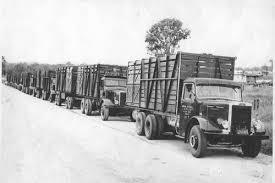 1950-trucks