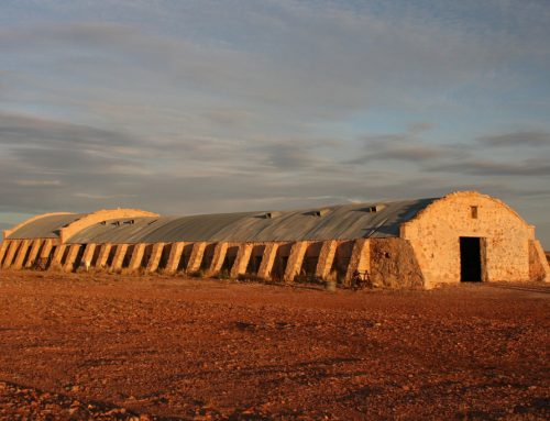 Halfway between Birdsville and Innamincka: Cordillo Downs Woolshed