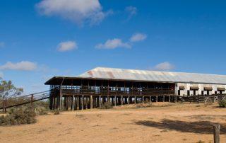 Kinchega NP, Shearing shed