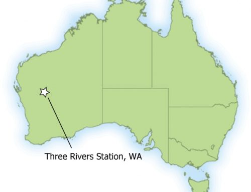 Three Rivers Station