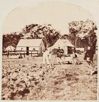 History Snippet – Burwood, NSW. 1858-59
